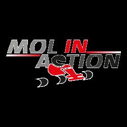 Mol in Action Logo